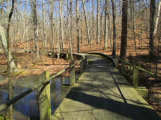 When leaves are out or not, they meander through the woods and over bridges crossing the lakes and mountain streams.
