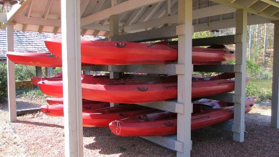 Canoes are also available for going out onto the water, a lovely way to see  The Gardens from a different perspective.