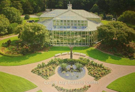 Another place to see is the Cecil B. Day Butterfly Center.