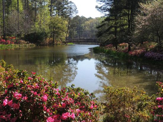 As you pass by the serene lake pools you will come upon the Sibley Center.