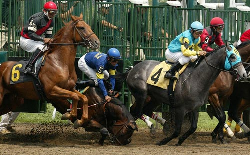 race-horse-accident