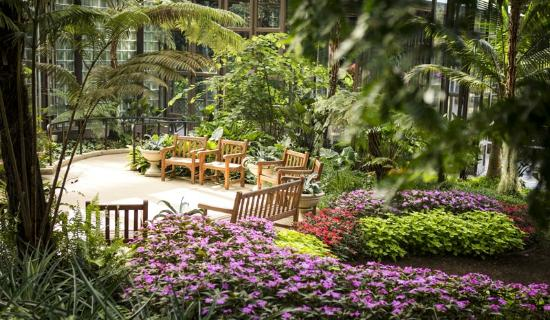 The Sibley Center is a hug open air glass walled greenhouse with several conservatories to show off the beautiful plants.  Here is a nice place to sit down awhile and relax.