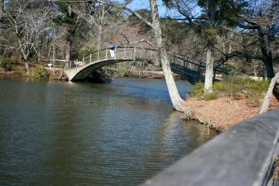There are many arched stone bridges across the several  lakes on site.