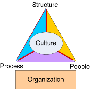 Organization_Triangle