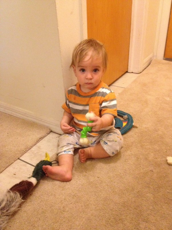 Grandson looks like his mother where his sister looks like her father. Yes, those are dog toys he is playing with. he refuses to play with baby toys and likes to harass the dogs. He had been crawling around on the back porch in his pJs and would not let me finish dressing him.