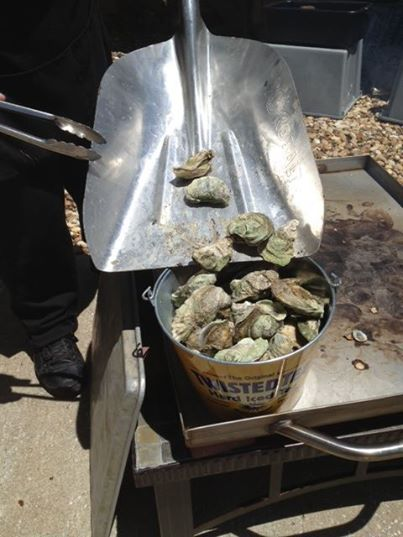 On buckets of roasted oysters from Apalachicola. I won't eat them from May to August. Only months with an 'R' in them.