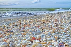 Beautiful-Sanibel-Island-Florida