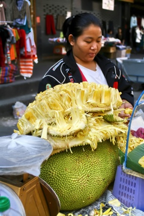 giant_jackfruit_s
