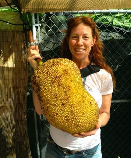Jackfruit-844x1024