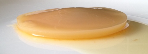 Healthy SCOBY