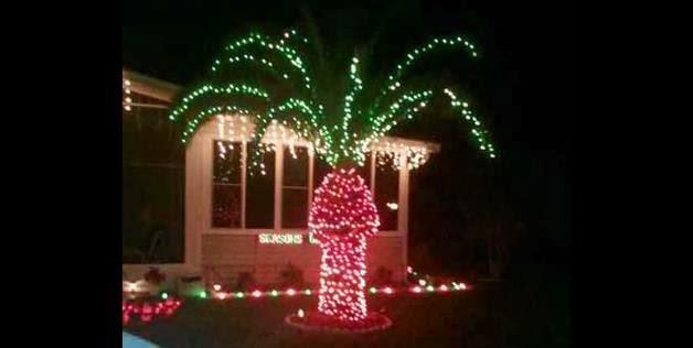 palm tree-christmas